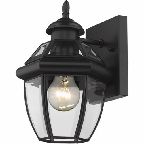 Z-Lite Westover 11  Clear Glass Brass Outdoor Wall Sconce in Black Perspective: front