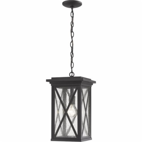 Z-Lite Brookside Seedy Glass Aluminum Outdoor Chain Mounted Pendant in Black Perspective: front