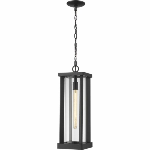 1 Light Outdoor Chain Mount Ceiling Fixture Frame Finish Black Perspective: front