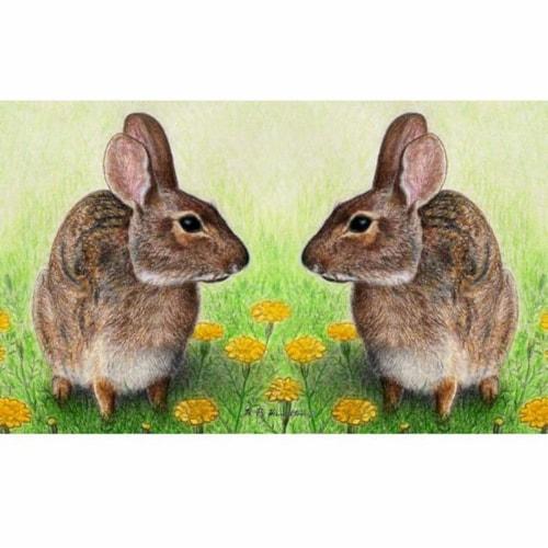 Betsy Drake DM053G 30 x 50 in. Rabbits Door Mat Perspective: front