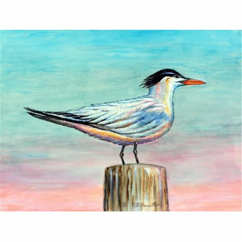 Betsy Drake PM951 Royal Tern Place Mat - Set of 4 Perspective: front