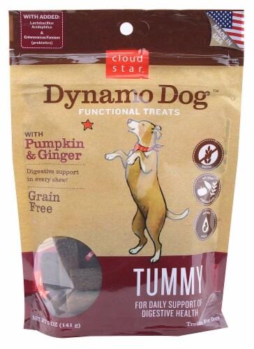 Cloud Star  Dynamo Dog™ Functional Treats Tummy Grain Free   Pumpkin & Ginger Perspective: front