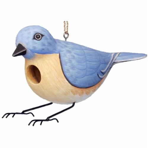 Songbird Essentials Eastern Bluebird Birdhouse Perspective: front