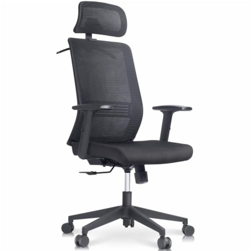 Happy Living Ergonomic Mesh Office Chair Perspective: front