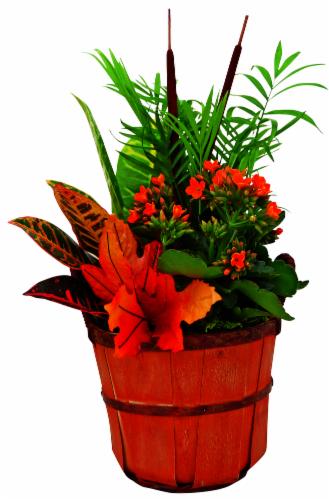 Bushel Basket Potted Flowers Perspective: front