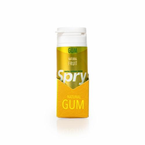 Spry Dental Defense Gum - Fresh Fruit Perspective: front