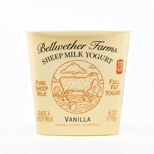 Bellwether Farms Vanilla Sheep Milk Yogurt Perspective: front