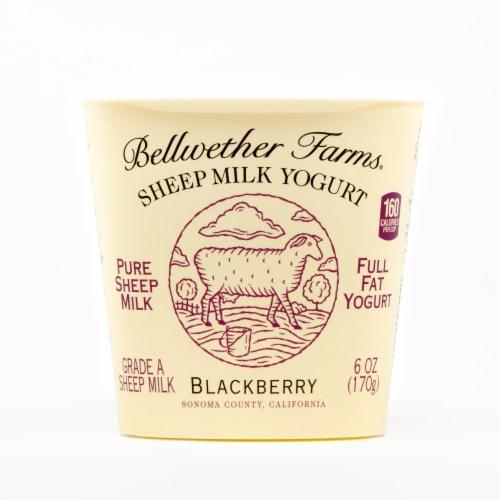 Bellwether Farms Blackberry Sheep Milk Yogurt Perspective: front