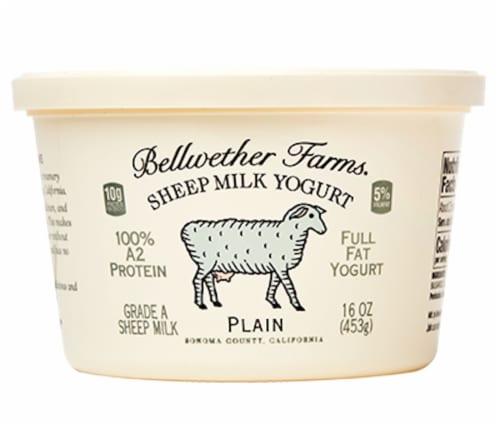Bellwether Farms Plain Sheep Milk Yogurt Perspective: front