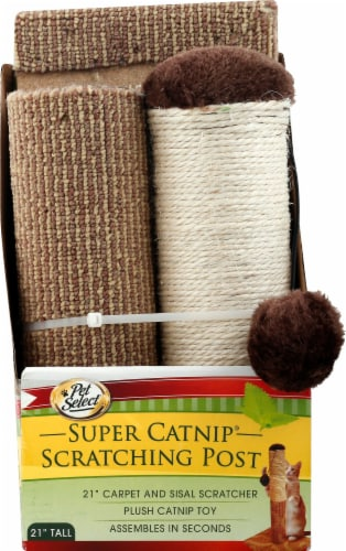 Pet Select Super Catnip Scratching Post Perspective: front