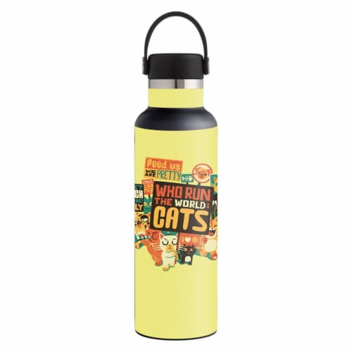 MightySkins HFST21-Cats Run The World Skin for Hydro Flask 21 oz Standard Mouth - Cats Run th Perspective: front