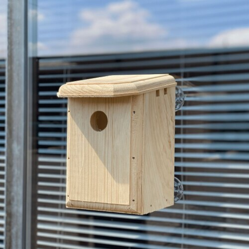 Premium Bird Houses See Through Window Nesting Box with Clear Back for Outside Perspective: front