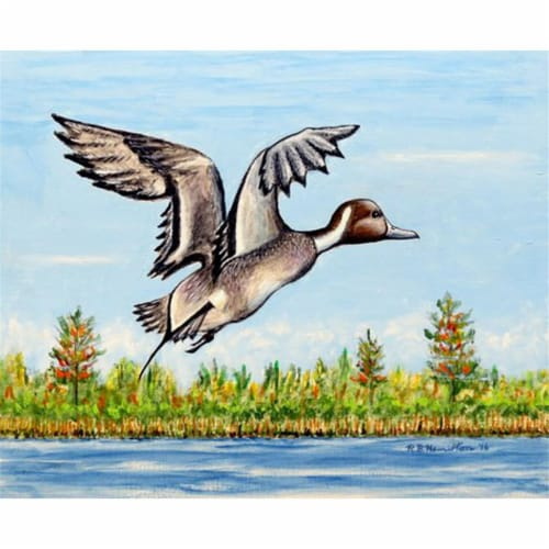 Betsy Drake PM394 Pintail Duck Place Mat - Set of 4 Perspective: front