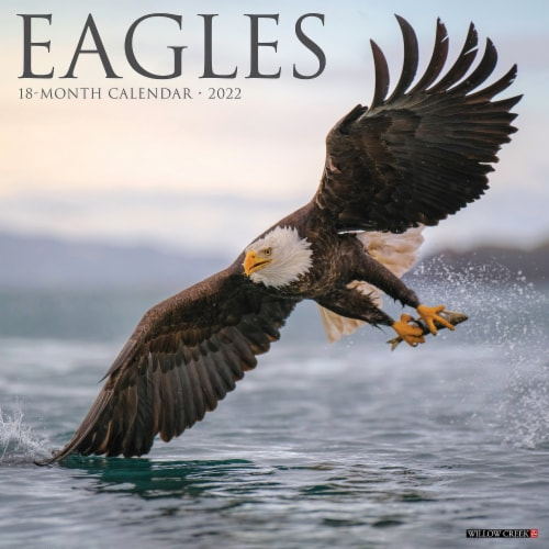 Eagles 2022 Wall Calendar Perspective: front