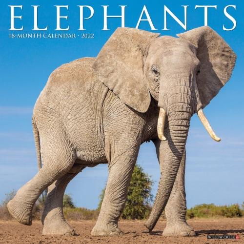 Elephants 2022 Wall Calendar Perspective: front