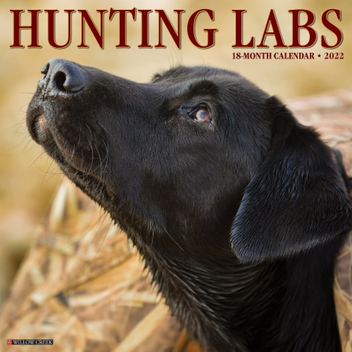 Hunting Labs 2022 Wall Calendar, (Labrador Retriever Dogs, Dog Breed) Perspective: front