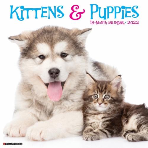 Kittens & Puppies 2022 Wall Calendar Perspective: front