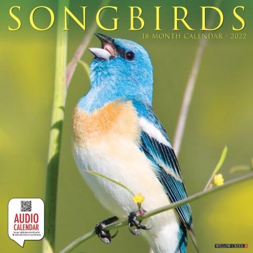 Songbirds 2022 Wall Calendar Perspective: front