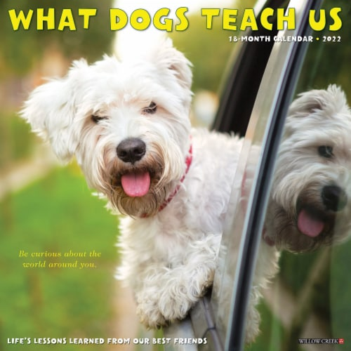 What Dogs Teach Us 2022 Wall Calendar Perspective: front