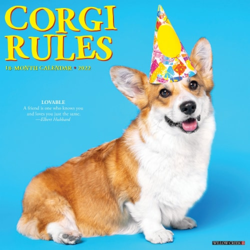 Corgi Rules 2022 Wall Calendar (Dogs) Perspective: front