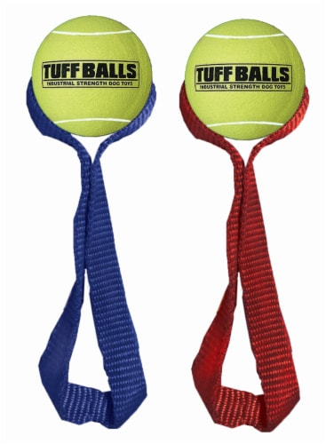PetSport USA Mini Fetch Me Fido Tuff Balls for Dogs Perspective: front