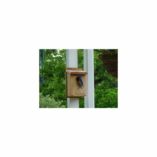 Woodlink Audubon Series Cedar Bluebird House Perspective: front