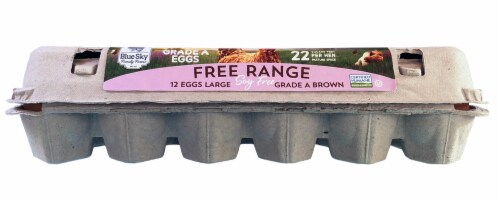 Blue Sky Free Range Soy Free Grade A Large Brown Eggs Perspective: front