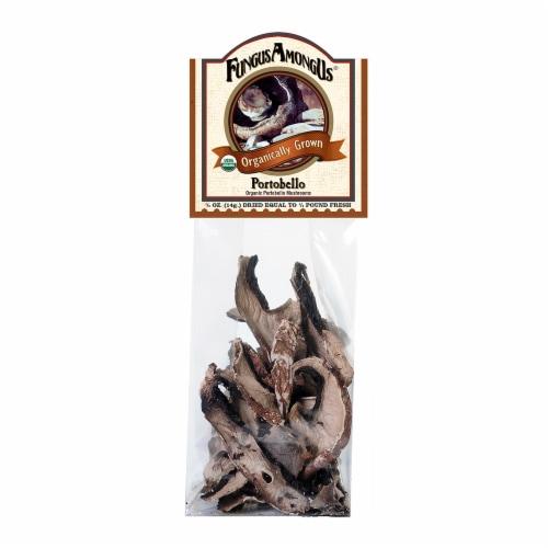 FungusAmongUs Organic Dried Portobello Mushrooms Perspective: front