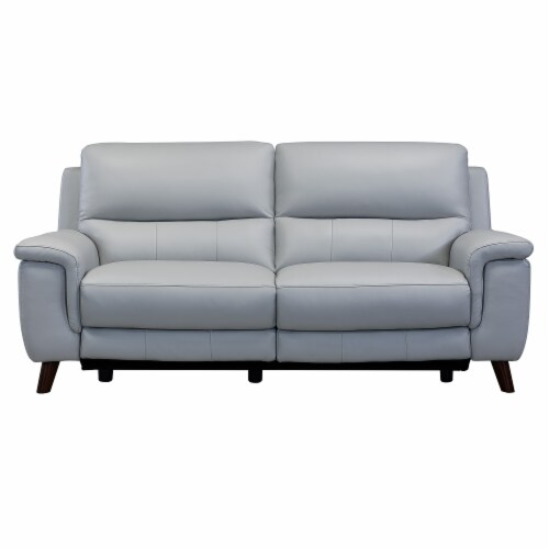 Lizette Contemporary Sofa in Dark Brown Wood Finish and Dove Grey Genuine Leather Perspective: front