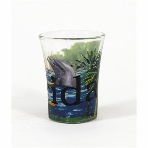 Americaware SGFLA02 Florida Full Color  Etched  Shot Glass Perspective: front