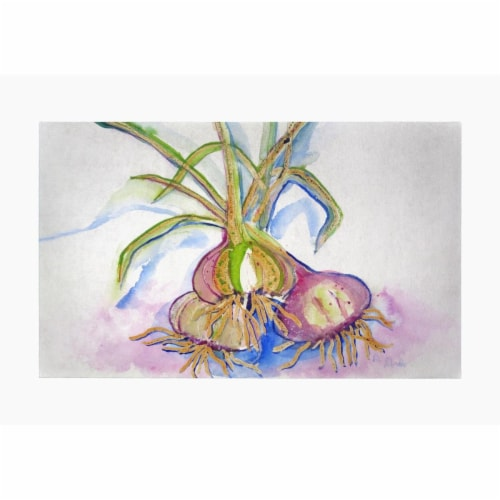 Betsy Drake DM1101G 30 x 50 in. Vidalia Onions Door Mat Perspective: front