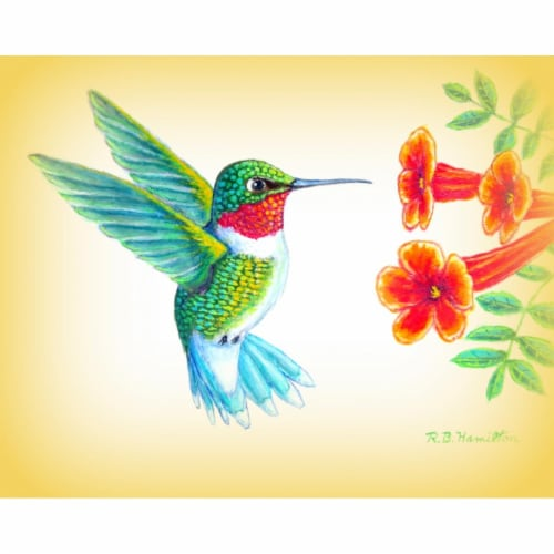 Betsy Drake PM1093 Dicks Hummingbird Place Mat - Set of 4 Perspective: front
