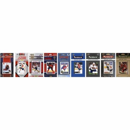 C&I Collectables FLPANTHERS919TS NHL Florida Panthers 9 Different Licensed Trading Card Team Perspective: front