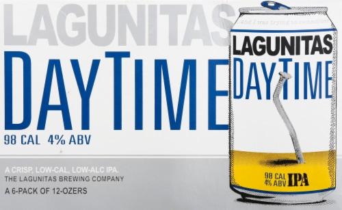 Lagunitas Daytime Craft Beer Perspective: front