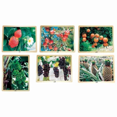 Fruit Puzzle Set - 9-Piece Perspective: front