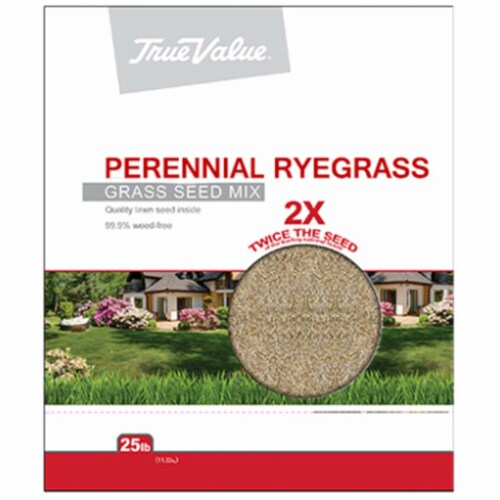 TV 25LB Peren Rye Seed, TV 25 lbs Peren Rye Seed Perspective: front