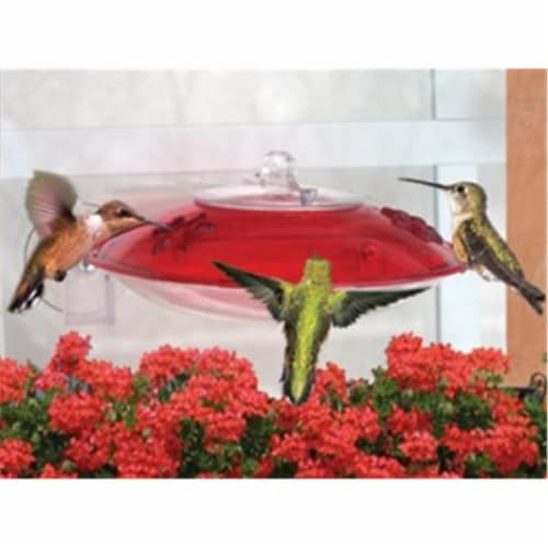 Droll Yankees Inc Window Hummingbird Feeder Perspective: front
