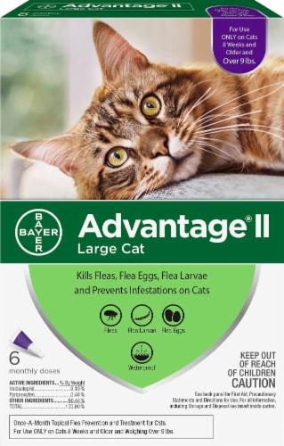 Advantage II Large Cat Flea Treatment Perspective: front