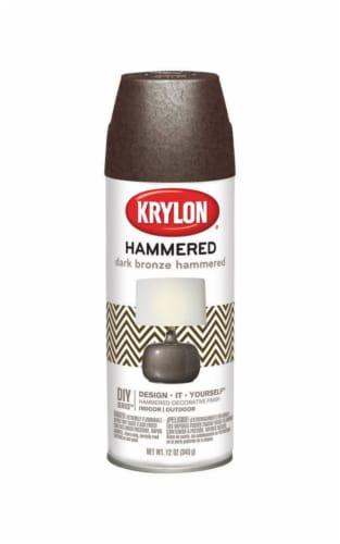 Krylon  Hammered  Dark Bronze  Spray Paint  12 oz. - Case Of: 1; Perspective: front