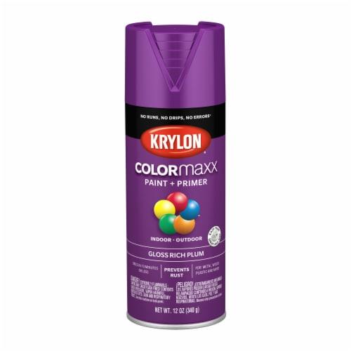 Krylon® Colormaxx Gloss Rich Plum Spray Paint & Primer Perspective: front