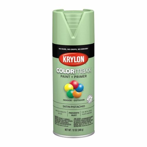 Krylon® ColorMaxx Indoor/Outdoor Paint and Primer - Satin Pistachio Perspective: front