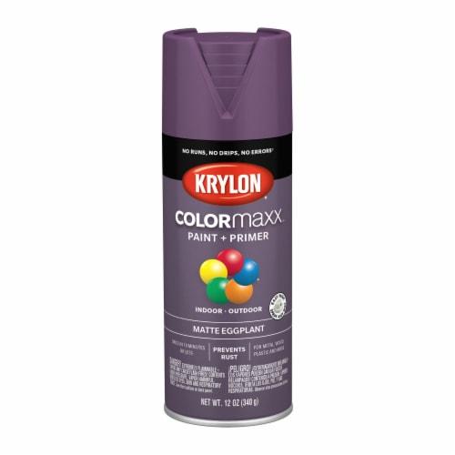 Krylon® ColorMaxx Matte Eggplant Indoor/Outdoor Spray Paint + Primer Perspective: front