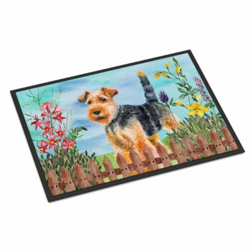 Welsh Terrier Spring Indoor or Outdoor Mat - 24 x 36 in. Perspective: front