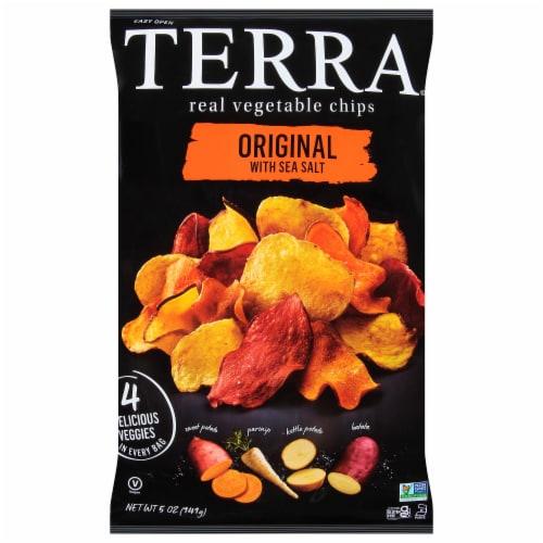 Terra Original Sea Salt Vegetable Chips Perspective: front