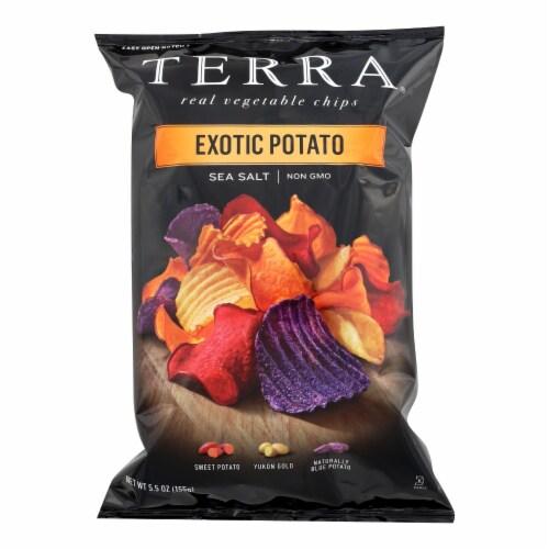 Terra Chips Exotic Potato Chips Sea Salt - Case of 12 - 5.5 oz. Perspective: front