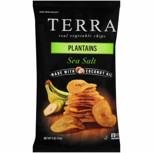 Terra Plantains Sea Salt Chips Perspective: front