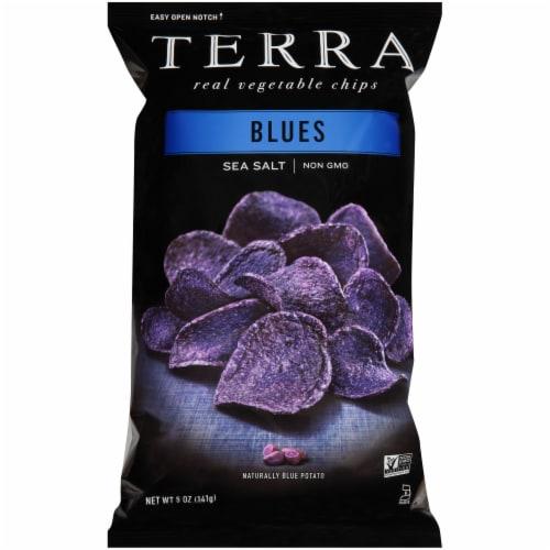 Terra Blues Sea Salt Real Vegetable Chips Perspective: front