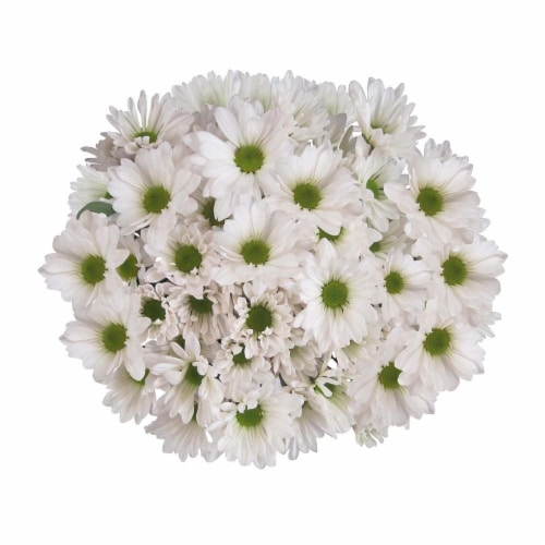 Daisy Bouquet Perspective: front