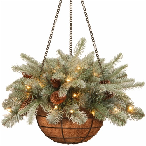 National Tree PEFA1-307L-20HB Frosted Artic Spruce Hanging Basket With Cones, 20 in. Perspective: front