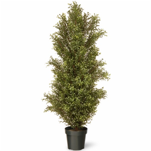 National Tree Company 60 Inch Argentia Artificial Plant Tree with Green Pot Perspective: front